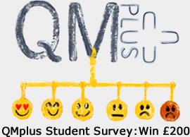 qmplus_student survey2