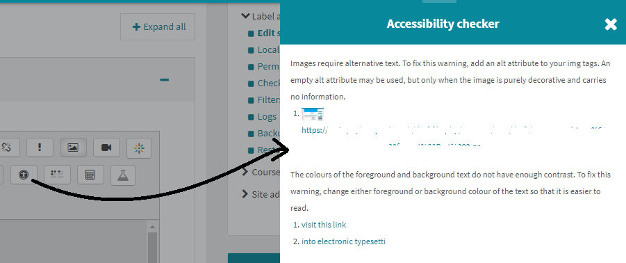 snapshot of accessibility checker tool