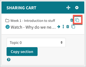 Copy icon in the sharing cart