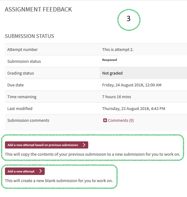Snapshot of Re-Submit Assignment Button