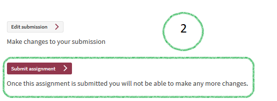 Snapshot of Submit Assignment Button